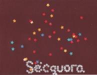 secquora10.jpg